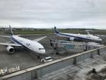 飛鳥の人さんが、宮崎空港で撮影した全日空 777-281/ERの航空フォト(写真)