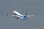 湖景さんが、福島空港で撮影した全日空 737-881の航空フォト(写真)
