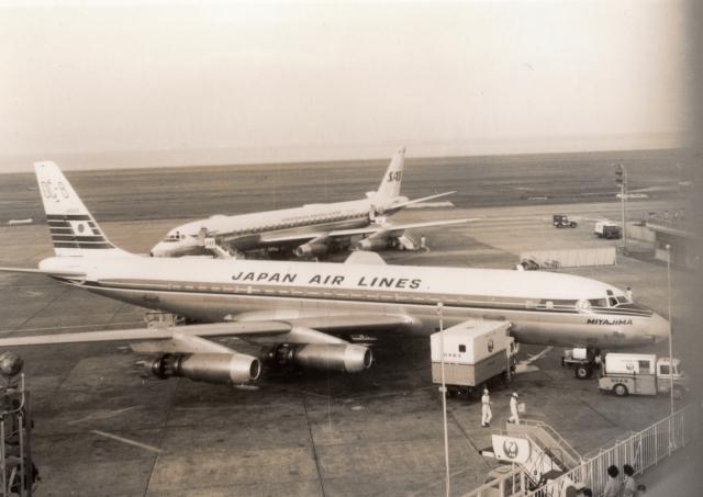 日本航空 Douglas DC-8 JA8005 ...