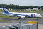 神宮寺ももさんが、成田国際空港で撮影した全日空 787-8 Dreamlinerの航空フォト(写真)