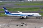 しま。さんが、羽田空港で撮影した全日空 787-8 Dreamlinerの航空フォト(写真)