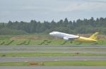 fukucyanさんが、成田国際空港で撮影したバニラエア A320-214の航空フォト(写真)