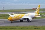 mild lifeさんが、関西国際空港で撮影したスクート 787-8 Dreamlinerの航空フォト(写真)