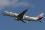 やまやんさんが、宮古空港で撮影した日本トランスオーシャン航空 737-8Q3の航空フォト(写真)