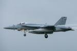ピカードさんが、厚木飛行場で撮影したアメリカ海軍 F/A-18E Super Hornetの航空フォト(写真)