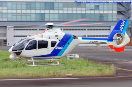いおりさんが、東京ヘリポートで撮影したオールニッポンヘリコプター EC135T2の航空フォト(飛行機 写真・画像)
