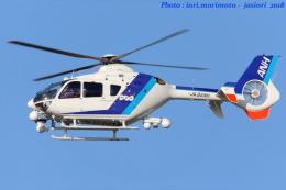 いおりさんが、福岡空港で撮影したオールニッポンヘリコプター EC135T2の航空フォト(写真)