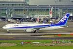 tkosadaさんが、羽田空港で撮影した全日空 767-381/ERの航空フォト(写真)