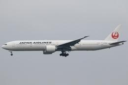 ★azusa★さんが、成田国際空港で撮影した日本航空 777-346/ERの航空フォト(飛行機 写真・画像)