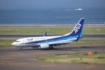 航空研究家さんが、中部国際空港で撮影した全日空 737-781の航空フォト(写真)
