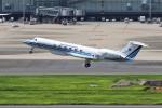 masa707さんが、羽田空港で撮影した海上保安庁 G-V Gulfstream Vの航空フォト(写真)