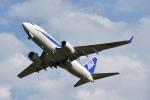 ワイエスさんが、女満別空港で撮影した全日空 737-781の航空フォト(写真)
