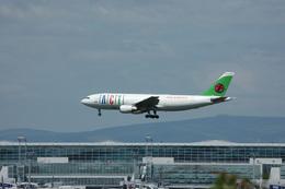 あにいさんが、フランクフルト国際空港で撮影したACTエアラインズ A300B4-103(F)の航空フォト(飛行機 写真・画像)