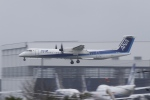とらとらさんが、成田国際空港で撮影したANAウイングス DHC-8-402Q Dash 8の航空フォト(飛行機 写真・画像)