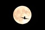AkiChup0nさんが、羽田空港で撮影したジェイ・エア ERJ-170/175の航空フォト(写真)