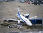 さんぜんさんが、中部国際空港で撮影した全日空 737-781の航空フォト(写真)