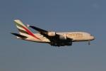 れもねりあさんが、成田国際空港で撮影したエミレーツ航空 A380-861の航空フォト(飛行機 写真・画像)
