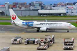 まくろすさんが、福岡空港で撮影した日本トランスオーシャン航空 737-8Q3の航空フォト(飛行機 写真・画像)