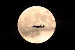 new_2106さんが、羽田空港で撮影した全日空 A321-211の航空フォト(写真)