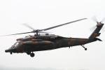 ちゅういちさんが、東富士演習場で撮影した陸上自衛隊 UH-60JAの航空フォト(写真)