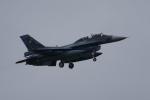 NOTE00さんが、三沢飛行場で撮影した航空自衛隊 F-2Bの航空フォト(写真)