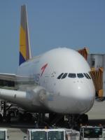 hachiさんが、成田国際空港で撮影したアシアナ航空 A380-841の航空フォト(写真)