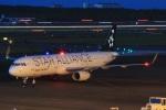 DONKEYさんが、宮崎空港で撮影したアシアナ航空 A321-231の航空フォト(写真)