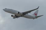 うすさんが、関西国際空港で撮影した日本航空 737-846の航空フォト(写真)