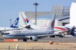panchiさんが、成田国際空港で撮影した中国国際航空 737-89Lの航空フォト(飛行機 写真・画像)