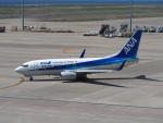 Tき/九州急行さんが、中部国際空港で撮影した全日空 737-781の航空フォト(写真)
