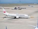 Tき/九州急行さんが、中部国際空港で撮影した日本航空 737-846の航空フォト(写真)