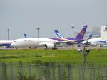 Tき/九州急行さんが、成田国際空港で撮影したタイ国際航空 A350-941XWBの航空フォト(写真)