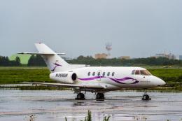 Cygnus00さんが、新千歳空港で撮影した金鹿航空 Hawker 800/1000の航空フォト(飛行機 写真・画像)