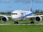 Naiki@南の島からさんが、宮古空港で撮影した全日空 787-8 Dreamlinerの航空フォト(写真)