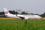 yabyanさんが、成田国際空港で撮影した日本航空 737-846の航空フォト(飛行機 写真・画像)