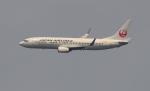 kenko.sさんが、成田国際空港で撮影した日本航空 737-846の航空フォト(写真)
