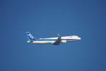 senbaさんが、羽田空港で撮影した全日空 A321-211の航空フォト(写真)