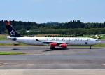 bluesky05さんが、成田国際空港で撮影したスカンジナビア航空 A340-313Xの航空フォト(写真)