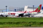 yabyanさんが、成田国際空港で撮影したティーウェイ航空 737-8HXの航空フォト(飛行機 写真・画像)