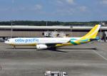 bluesky05さんが、成田国際空港で撮影したセブパシフィック航空 A330-343Eの航空フォト(写真)