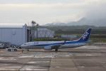 VEZEL 1500Xさんが、静岡空港で撮影した全日空 737-8ALの航空フォト(写真)
