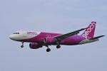 yabyanさんが、成田国際空港で撮影したピーチ A320-214の航空フォト(飛行機 写真・画像)