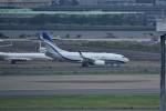 おかめさんが、羽田空港で撮影した現代自動車 737-75G BBJの航空フォト(写真)