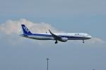おかめさんが、羽田空港で撮影した全日空 A321-211の航空フォト(写真)