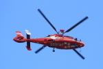 キイロイトリさんが、福岡空港で撮影した福岡市消防局消防航空隊 AS365N3 Dauphin 2の航空フォト(写真)