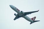 FRTさんが、関西国際空港で撮影したティーウェイ航空 737-8Q8の航空フォト(飛行機 写真・画像)