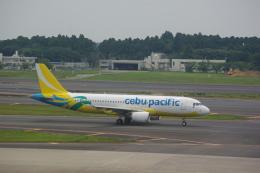 ぼのさんが、成田国際空港で撮影したセブパシフィック航空 A320-214の航空フォト(飛行機 写真・画像)