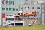 kaeru6006さんが、東京ヘリポートで撮影した新日本ヘリコプター 407の航空フォト(写真)