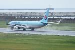 kij niigataさんが、新潟空港で撮影した大韓航空 737-9B5/ER の航空フォト(写真)