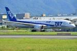@あきやんさんが、伊丹空港で撮影した全日空 787-8 Dreamlinerの航空フォト(写真)